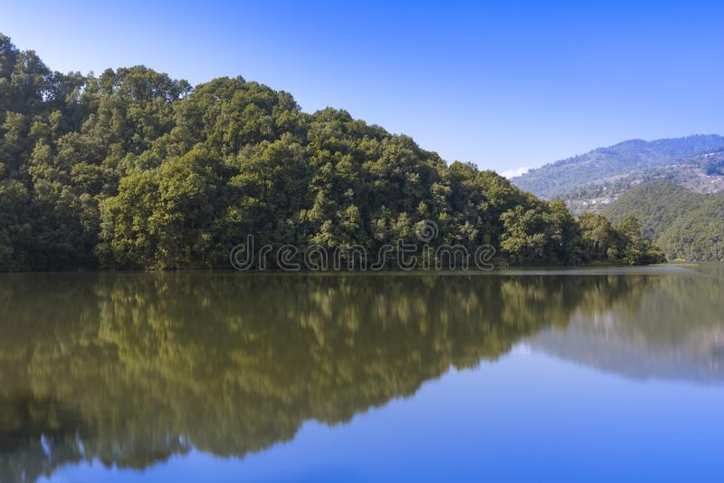 Reflexão da floresta no lago imagem de stock royalty free