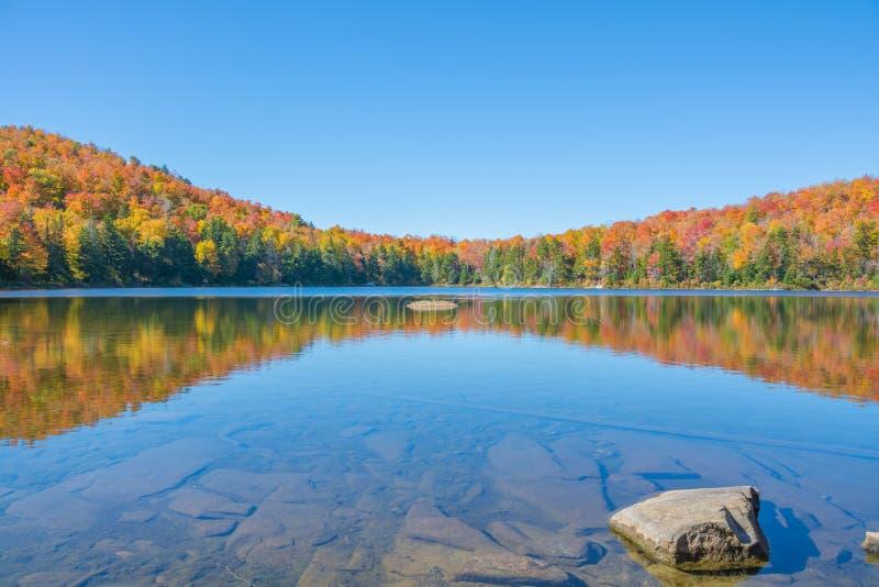 Reflexão da folhagem de outono em uma lagoa rasa foto de stock royalty free