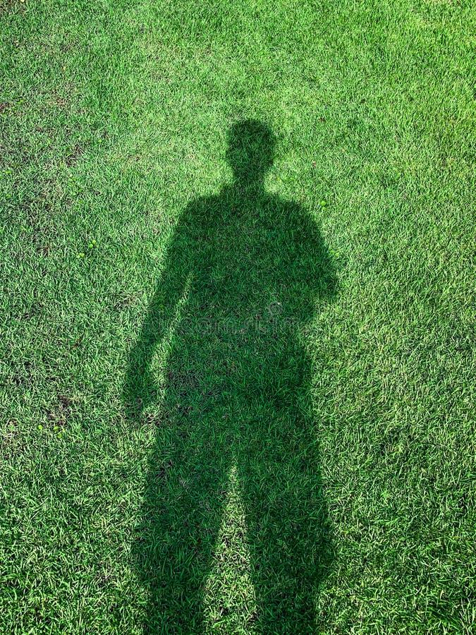 A reflexão da grama de humano foto de stock royalty free