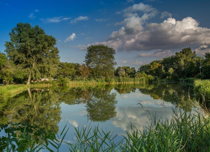 Reflexão da lagoa da noite imagens de stock royalty free