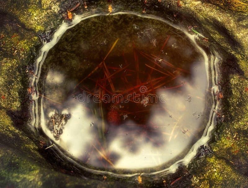 Reflexão da luz solar em uma poça da água