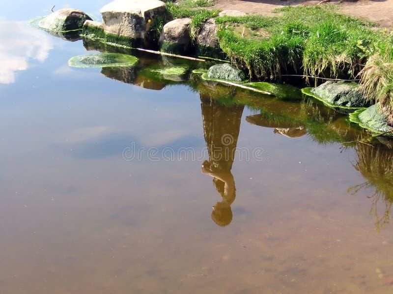 Reflexão da menina na água fotografia de stock royalty free