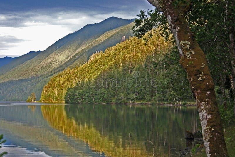 Reflexão da montanha foto de stock royalty free