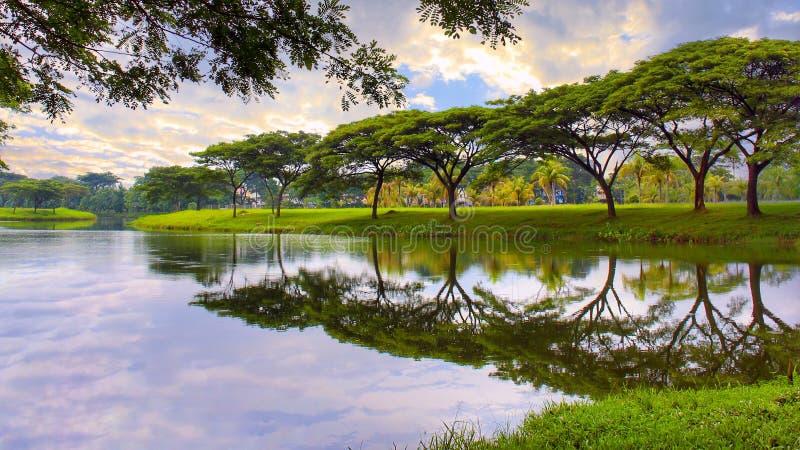 Reflexão da paisagem imagem de stock royalty free