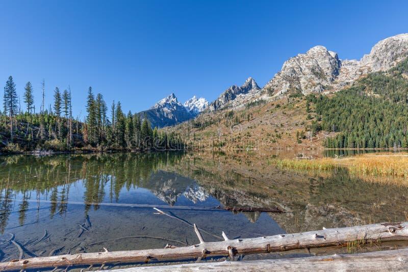 Reflexão da queda do lago string fotos de stock