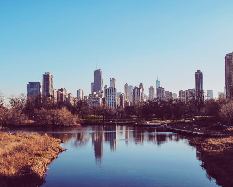 Reflexão da skyline de Chicago imagem de stock royalty free