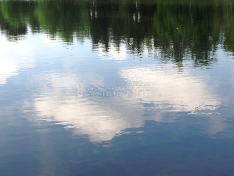 Reflexão das árvores e das nuvens na água foto de stock royalty free
