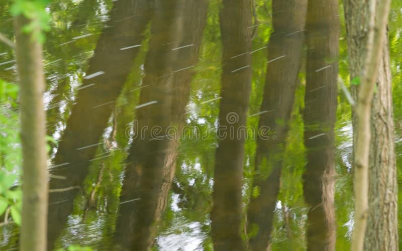 Reflexão das árvores em um dia de verão ensolarado na água da angra de Minnehaha em Minneapolis, Minnesota imagens de stock
