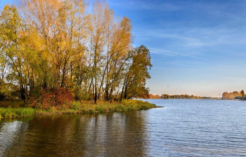 Reflexão das árvores na água no outono imagem de stock