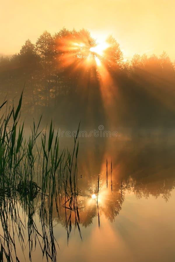 Reflexão das primeiras raias do sol imagem de stock