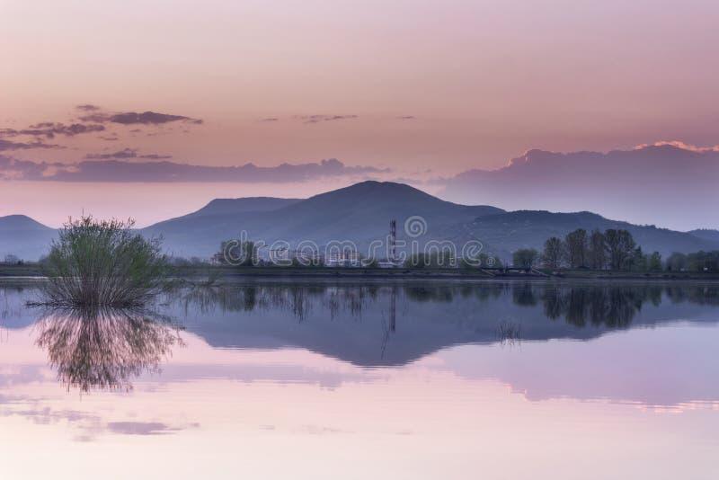 Reflexão de espelho azul do lago da hora com o arbusto roxo do céu e do primeiro plano imagens de stock