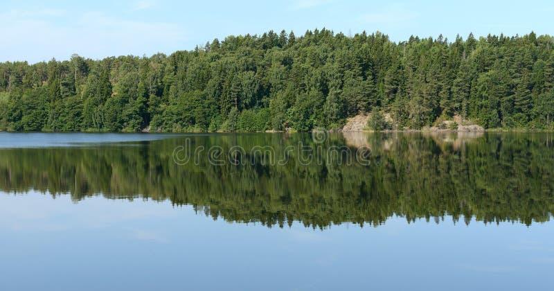 Reflexão de espelho da floresta na água imóvel Ilhas de Aland verão imagem de stock royalty free