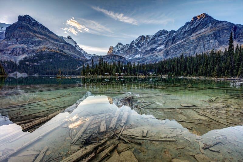 Reflexão de Hara do ` do lago O no alvorecer imagens de stock royalty free