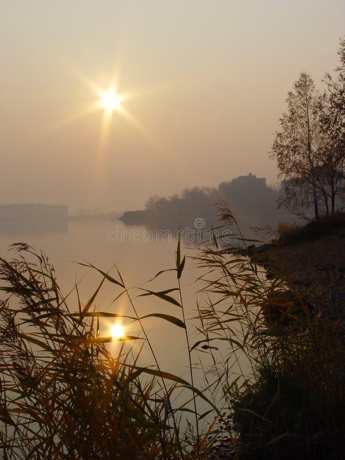Reflexão de Sun fotografia de stock