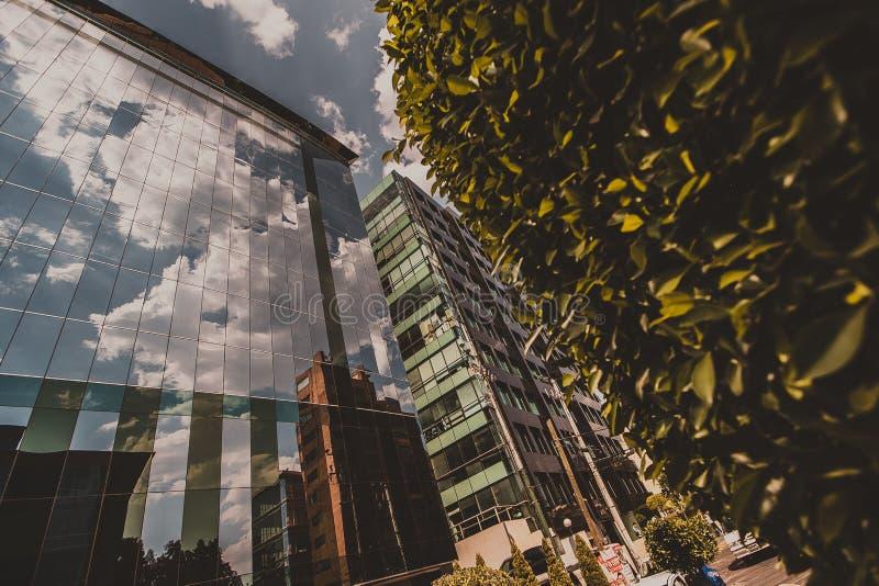 Reflexão do céu foto de stock royalty free