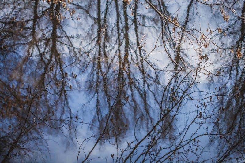Reflexão do céu na água Mola adiantada Estilo da pintura imagem de stock royalty free