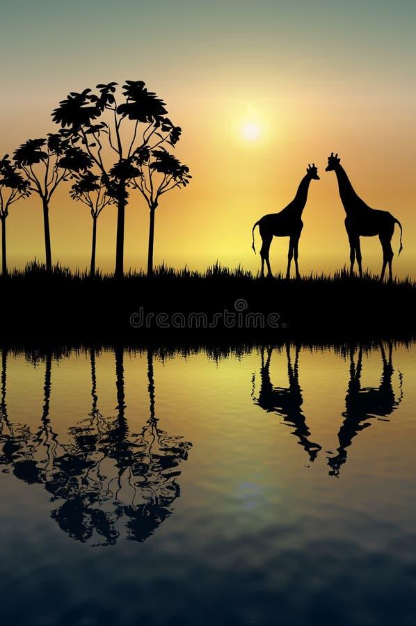 Reflexão do Giraffe ilustração stock