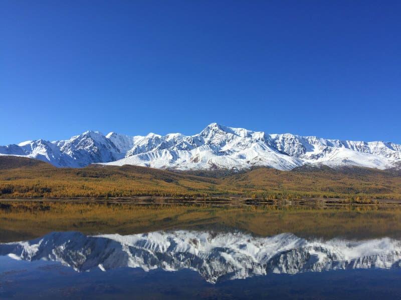 Reflexão do lago do espelho das montanhas Paisagem surpreendente da montanha Montanhas de Altai Estepe de Kurai Lago Dzhangyskol imagens de stock