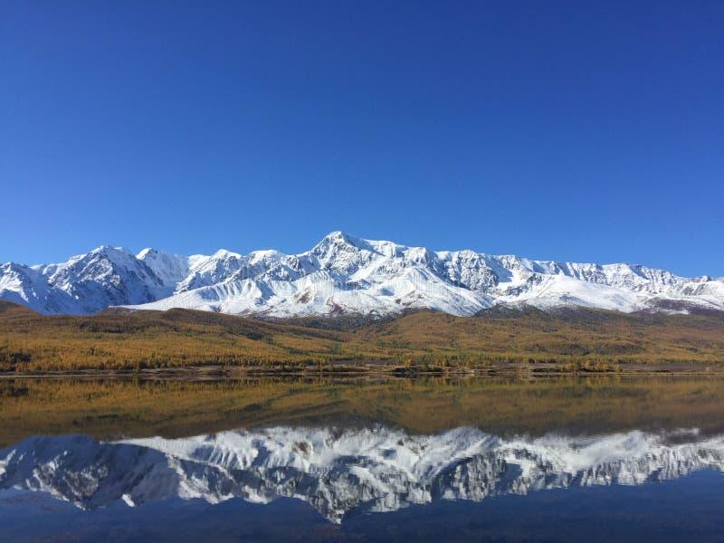 Reflexão do lago Ridge da montanha Paisagem surpreendente da montanha Montanhas de Altai Estepe de Kurai Lago Dzhangyskol fotos de stock royalty free