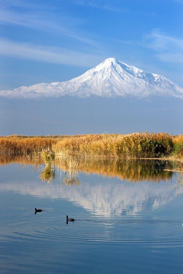 Reflexão do Monte Ararat no lago fotografia de stock