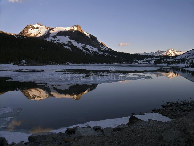 Reflexão do Mt. Dana imagem de stock