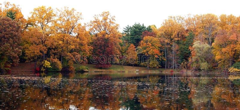 Reflexão do outono foto de stock
