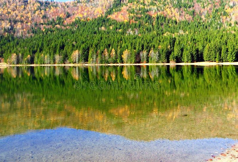Reflexão do outono, no lago imagens de stock royalty free