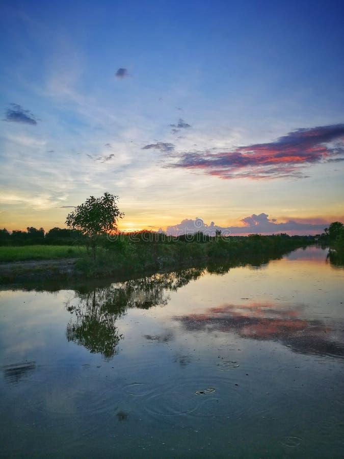 Reflexão do por do sol e da única árvore em kelantan, malaysia fotografia de stock