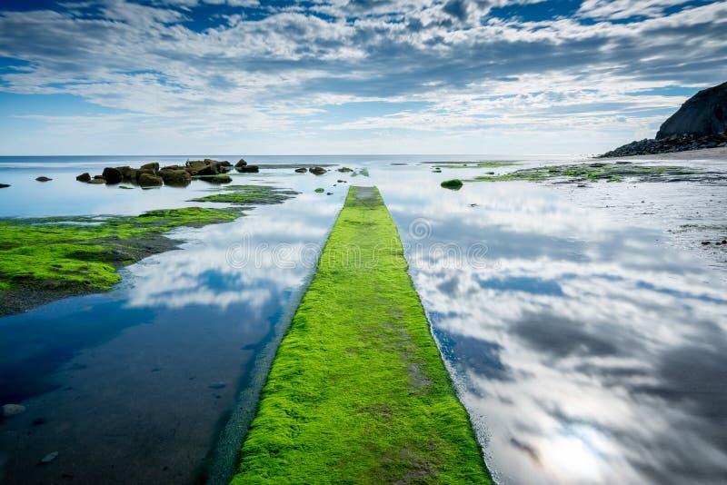 Reflexão em penhascos do Oriente Próximo da água, North Yorkshire do céu de Whitby, Inglaterra imagem de stock