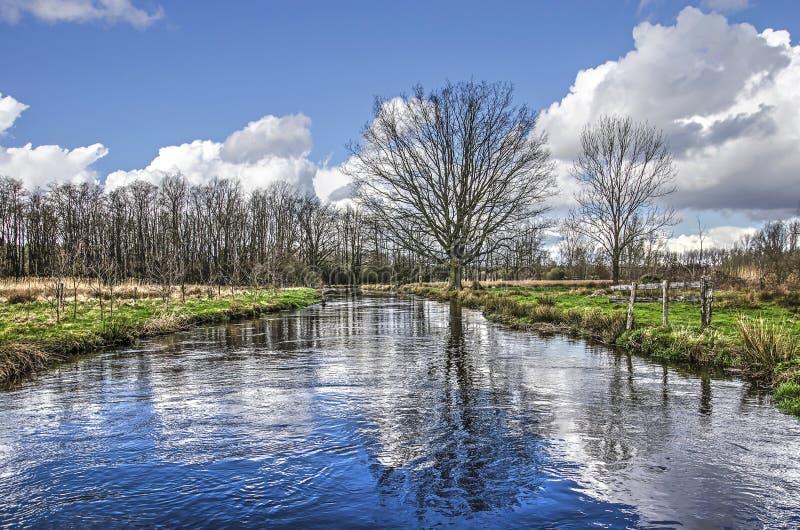 Reflexão em um rio pequeno fotografia de stock