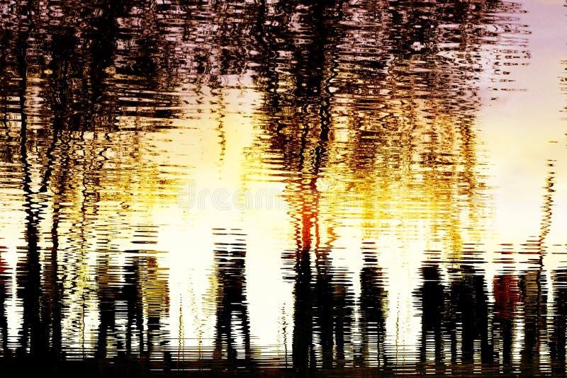 Reflexão na água fotografia de stock royalty free