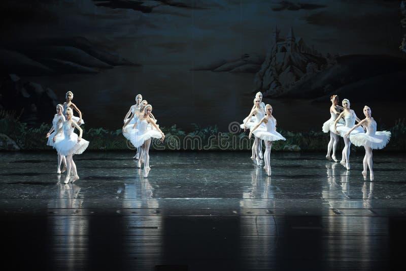 A reflexão na água- pura na formação de bailado-bailado O Lago das Cisnes fotos de stock