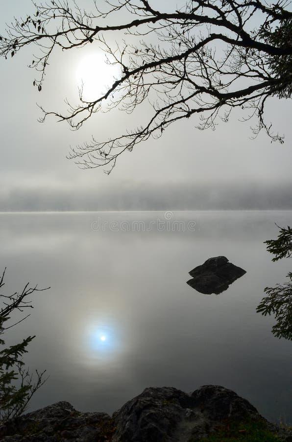 Reflexão no lago Bohinj dentro cedo e na manhã nevoenta imagem de stock royalty free