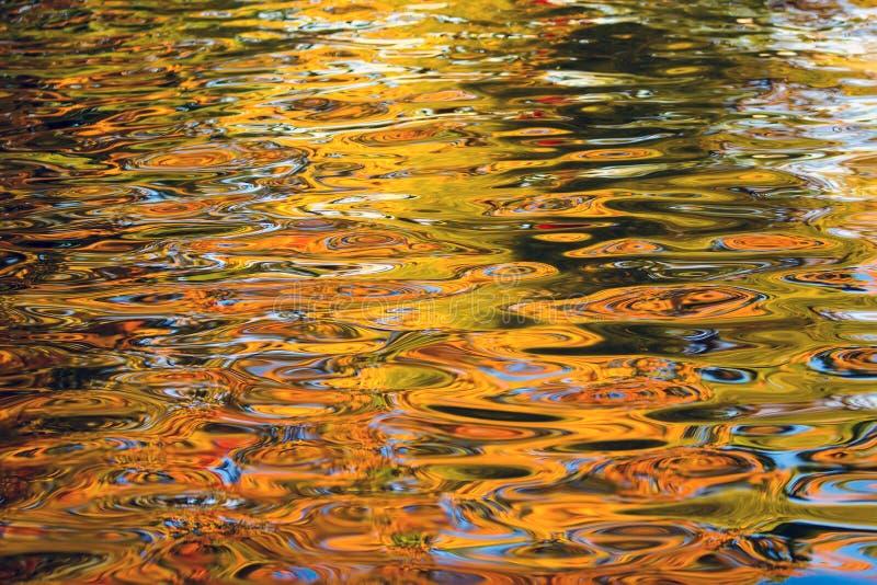 Reflexão outonal da água fotografia de stock