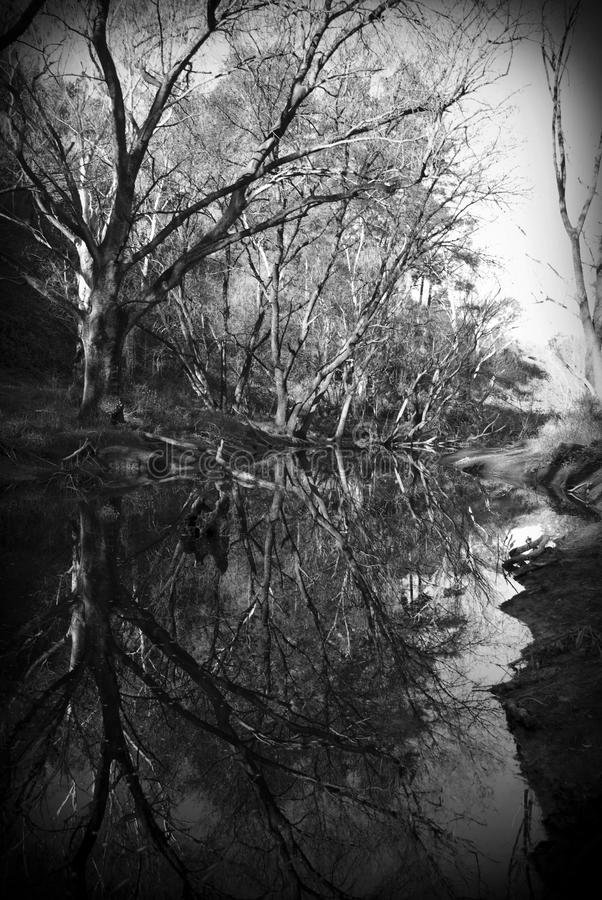 Reflexão preto e branco fotos de stock royalty free