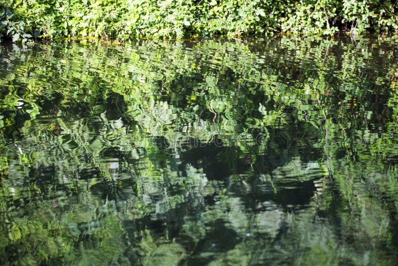 Reflexões bonitas no canal de Chichester em Sussex ocidental, Inglaterra imagem de stock royalty free