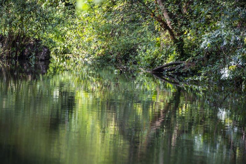Reflexões bonitas no canal de Chichester em Sussex ocidental, Inglaterra imagens de stock royalty free