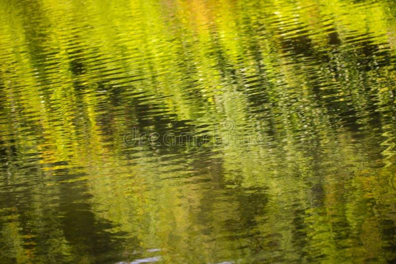 Reflexões bonitas no canal de Chichester em Sussex ocidental, Inglaterra foto de stock
