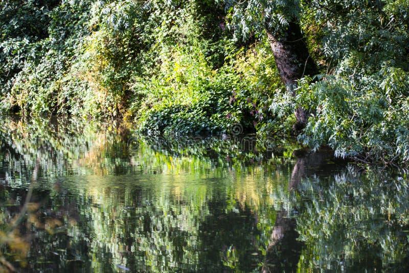 Reflexões bonitas no canal de Chichester em Sussex ocidental, Inglaterra fotografia de stock