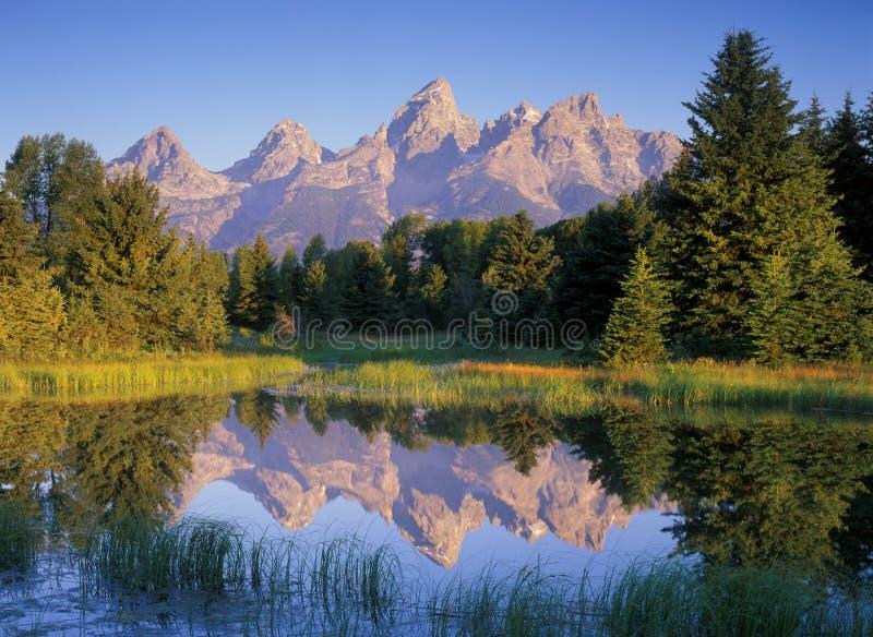 Reflexões da montanha da manhã foto de stock