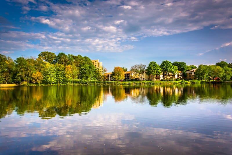 Reflexões da noite no lago Wilde em Colômbia, Maryland fotografia de stock royalty free