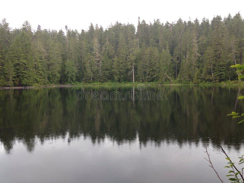 Reflexões da precipitação do La do lago imagens de stock royalty free