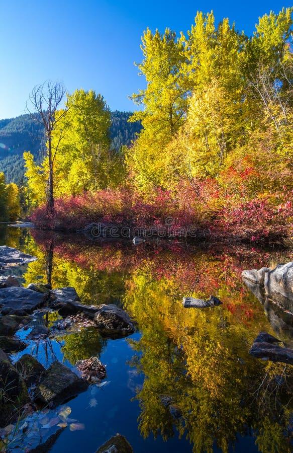 Reflexões da queda no rio de Wenatchee, Washington State foto de stock