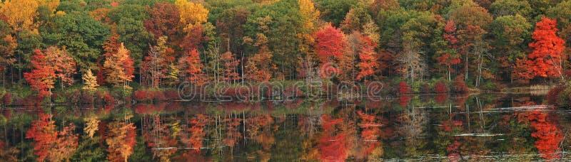 Reflexões do lago fall imagem de stock royalty free