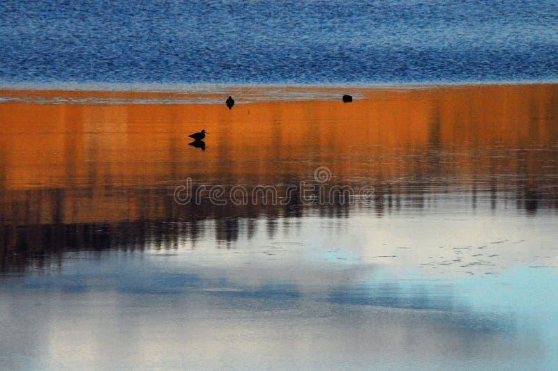 Reflexões do por do sol de Oregon em quedas de Klamath fotografia de stock royalty free
