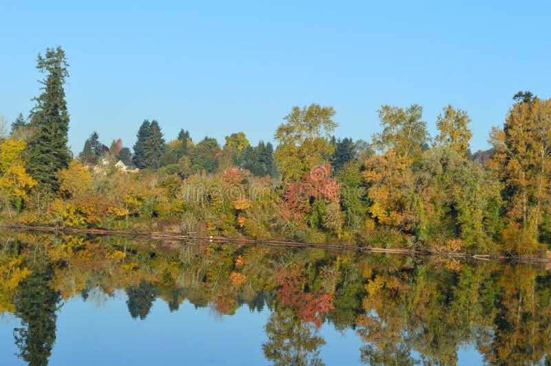 Reflexões do rio fotografia de stock royalty free