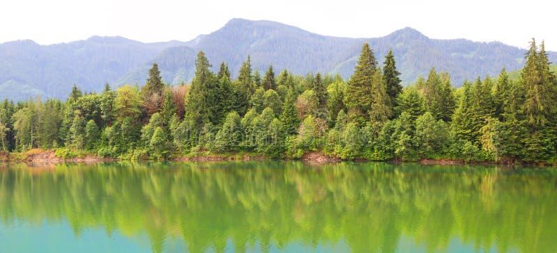 Reflexões do rio de Cowlitz foto de stock