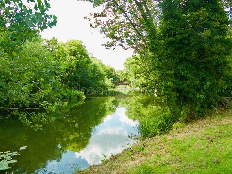 Reflexões do verão no rio avon imagem de stock
