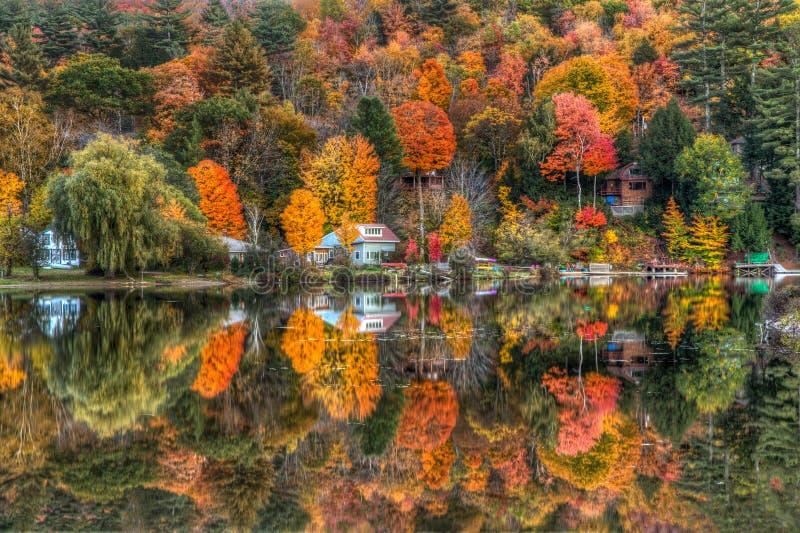 Reflexões doces imagens de stock royalty free