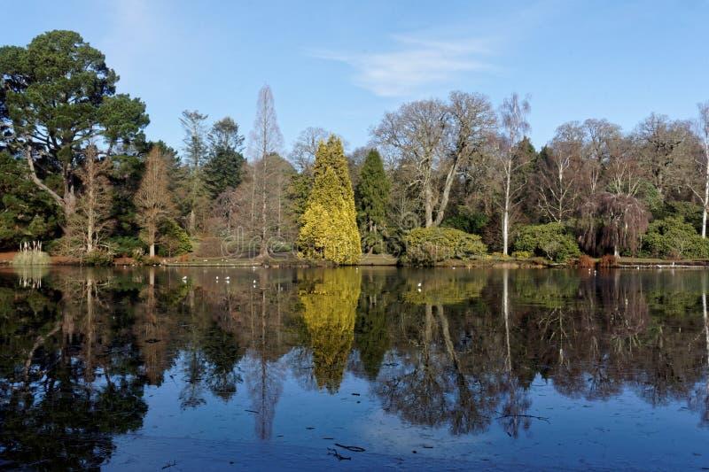 Reflexões em um lago inglês imagens de stock royalty free